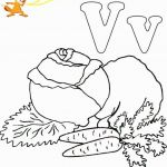 Dragons Coloring Book Inspirational Wonderful Coloring Pages Dragon Balls to Print Picolour