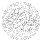 Dragons Pictures to Print Awesome Awesome Dragon Mandala Coloring Pages – Tintuc247