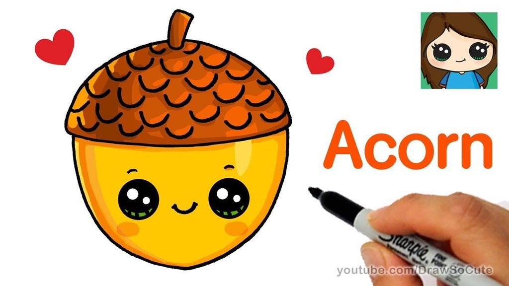 How to Draw a Cute Acorn Easy Drawing and Art