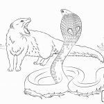 Easy Coloring Pages Inspirational Black Mamba Coloring Pages at Getdrawings