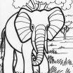 Elephant Adult Coloring Pages Best Indian Elephants Coloring Pages Lovely Elephant Coloring Pages for