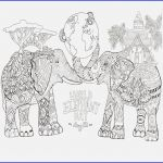 Elephant Coloring Book Creative 15 Fresh Fantasy Coloring Books for Adults
