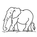 Elephant Coloring Books Beautiful Elephant to Color Animal Coloring Pages