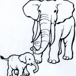 Elephant Coloring Books Inspirational Fresh Baby and Mother Animals Coloring Pages – Kursknews