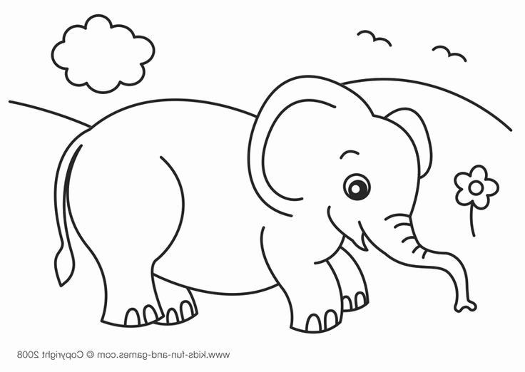 √ Animal Colouring Page and Animal for Coloring Color Page New