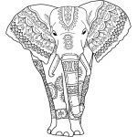 Elephant Coloring Pages for Adults Beautiful Elephant Coloring Pages for Adults Best Coloring Pages for Kids