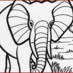 Elephant Coloring Pages for Adults Beautiful Elephant Line Drawing asian Elephant Coloring Page Color Page