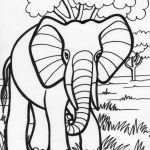 Elephant Coloring Pages for Adults Beautiful New Indian Animal Coloring Pages – Tintuc247