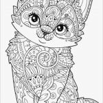 Elephant Coloring Pages for Adults Inspiration Cute Coloring Pages Disney ¢–· Elephant Coloring Pages Best Color