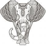 Elephant Coloring Pages for Adults Inspiring Elephant Coloring Pages for Adults Best Coloring Pages for Kids