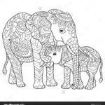 Elephant Coloring Pages for Adults Marvelous 175 Best Elephant Coloring Pages for Adults Images In 2019