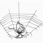 Erotic Coloring Pages Marvelous √ Drawing Art Websites and Spider Web Coloring Page Heavenly Spider