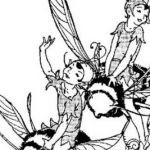 Faerie Coloring Pages Awesome Modern Flower Fairy Coloring Page