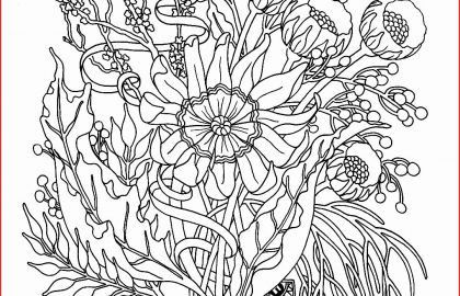Fairy Adult Coloring Inspirational Fairy Drawings Adult Coloring Pages Fairies Coloring