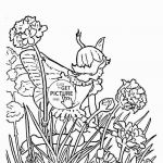 Fairy Coloring Pages Amazing 25 Excelent for Fairy Coloring Page Picture