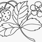 Flower Coloring Pages Pdf Awesome Coloring Ideas Extraordinary Free Inspirational Coloring Pages Pdf