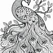 Free Downloadable Adult Coloring Pages Best Incredible Free Adult Coloring Sheets Picolour