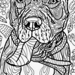 Free Dragon Coloring Pages Exclusive 62 Charming Dragon to Print Free Coloring Pages
