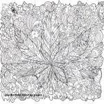 Free Fairy Color Pages Unique Trippy Coloring Pages Mushrooms – Salumguilher