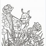 Free Horse Coloring Pages for Adults Excellent Coloring Free Printable Animal Coloring Pages for Adults Awesome