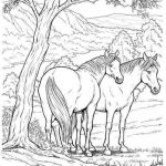 Free Horse Coloring Pages for Adults Exclusive 51 Free Printable Realistic Horse Coloring Pages La Union