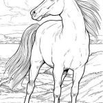 Free Horse Coloring Pages for Adults Inspiration Coloring Page Horse Beautiful Coloring for Free Best Color Page New