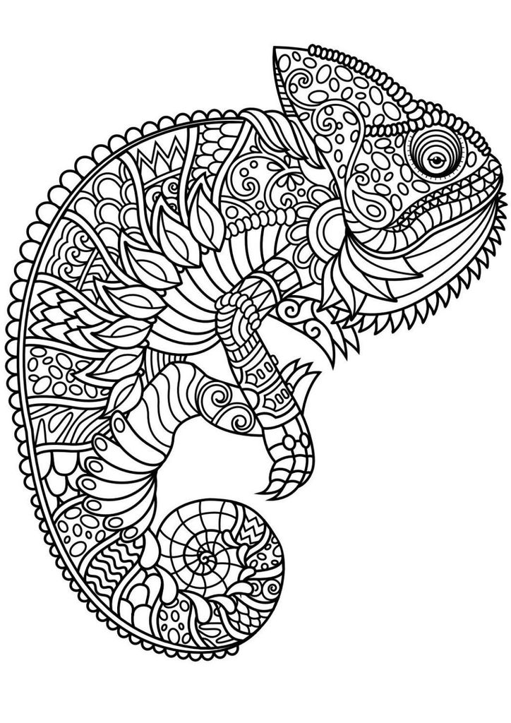Free Horse Coloring Pages for Adults Inspirational Coloring Page Free Coloringagesdfrintable Animal Best Od Dog