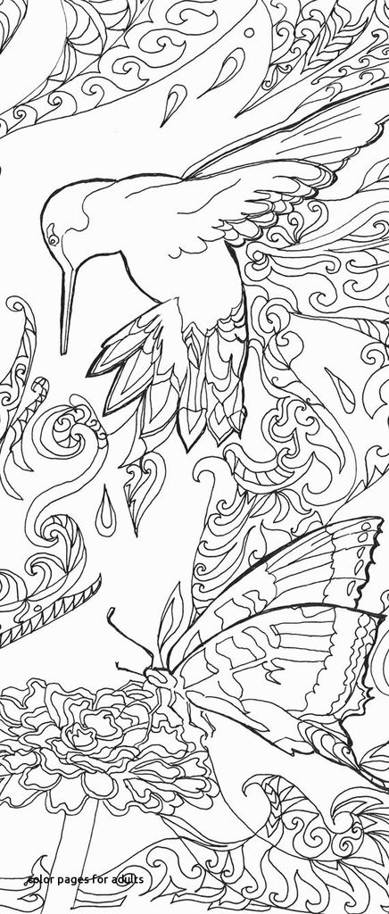 Free Horse Coloring Pages for Adults Inspiring 23 Elephant Coloring Pages to Print Free