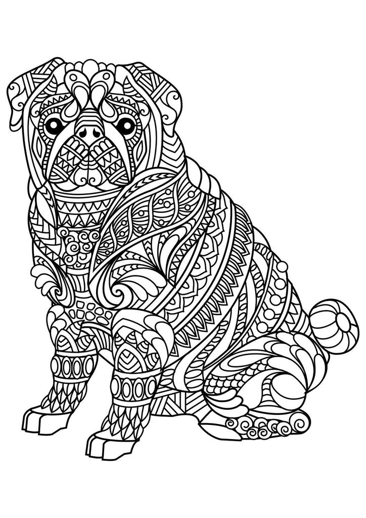 Free Horse Coloring Pages for Adults Wonderful Animal Coloring Pages Pdf Coloring Animals