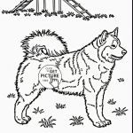 Free Mandala Coloring Pages New Dog Coloring Pages Printable Terrific Cool Printable Coloring Pages