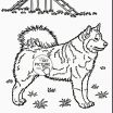 Free Mandala Coloring Sheets Exclusive Dog Coloring Pages Printable Terrific Cool Printable Coloring Pages