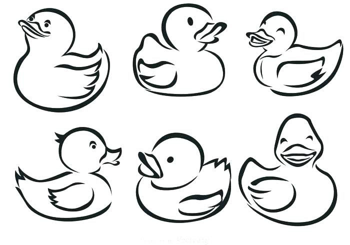 Free Online Printable Coloring Pages Awesome Duck Outline Coloring Page Pages for Adults Pdf Kids Halloween