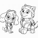 Free Paw Patrol Coloring Pages Best Coloring Book 37 Marvelous Paw Patrol Coloring Pages Skye Paw