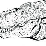 Free Printable Dinosaur Coloring Pages Creative Printable Dinosaur Coloring Pages – Psubarstool