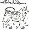 Free Printable Dog Pictures Elegant Dog Color Pages Awesome Beautiful Coloring Pages Fresh Https I