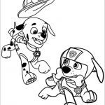 Free Printable Paw Patrol Awesome Paw Patrol Free Best How to Draw Paw Patrol 8100 Coloring Pages