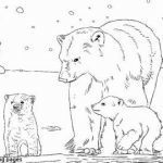 Free Printable Zentangle Coloring Pages Unique √ Koala Coloring Pages or Adult Coloring Page Koala Printable