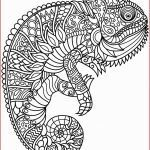 Full Size Coloring Pages for Adults Brilliant Coloring Free Printable Mandala Coloring Pages Elegant Best Easy