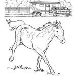 Gypsy Coloring Pages Best Of Coloring Pages Horses – Financialsolutionsub