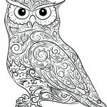 Halloween Costumes Coloring Pages New Owls Coloring Pages Fresh Cute Owl Halloween Col – Abbildungfo