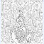 Halloween Zentangle Patterns Exclusive Idees Fluch Pumpkin Coloring Pages Wiki Design