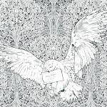 Harry Potter Coloring Book Online Amazing Harry Potter Free Coloring Pages