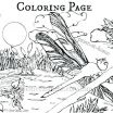 Harry Potter Coloring Pages New Hermione Coloring Pages – Provadiafo