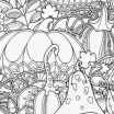 Horse Anatomy Coloring Book Awesome Free Anatomy Coloring Pages Printable Best Printable Anatomy