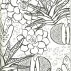 Inside Out Coloring Book Wonderful Sunflower Coloring Page New Coloring Book Cover Fresh S S Media