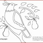 Jesus Loves Me Coloring Page Creative Coloring Pages Jesus Walks Water Coloring Pages Patinsudouest