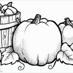 Kindness Coloring Sheets Brilliant Awesome Fruit Coloring Page 2019