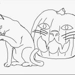 Kittens Coloring Pages Best Of Free Coloring