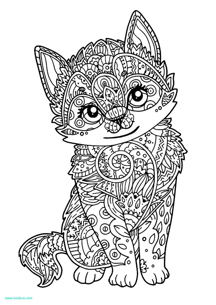 Beautiful Kitten Coloring Page 2019