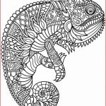 Large Coloring Pages for Adults Best Coloring Free Printable Mandala Coloring Pages Elegant Best Easy